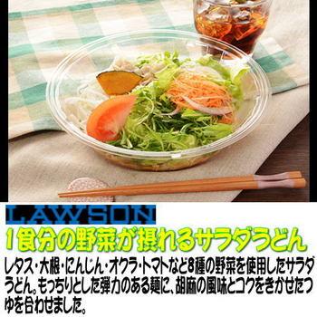 13issyokubunoyasaigatorerusarada.jpg